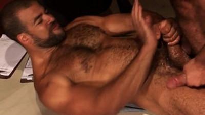 anal  bears  black gay