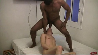 anal  black and white  black cock